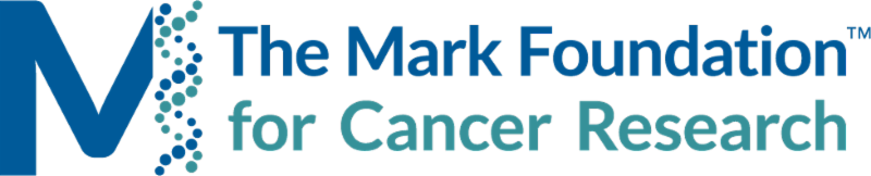 Mark Foundation logo