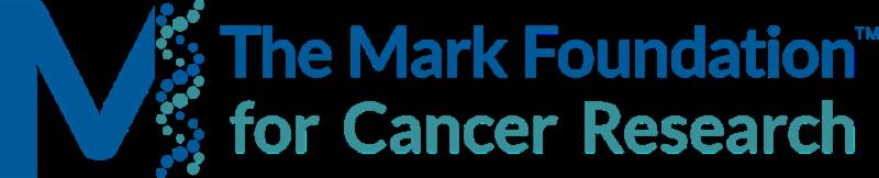 Mark Foundation logo