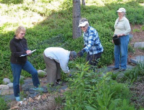 Claire providing Field Guidance