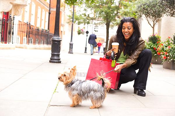 Shopping with Your Furry Friend at Dog-Friendly Stores