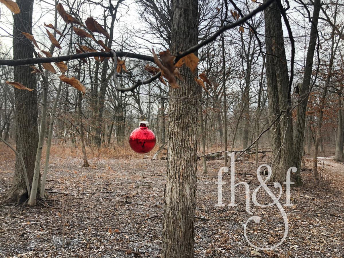Our Christmas of small things