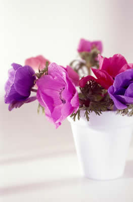 purple-flower-vase.jpg