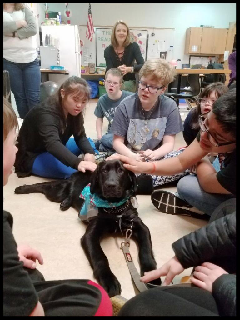 Students sit in a semicircle around a black lab_ some are petting the dog while others look on.