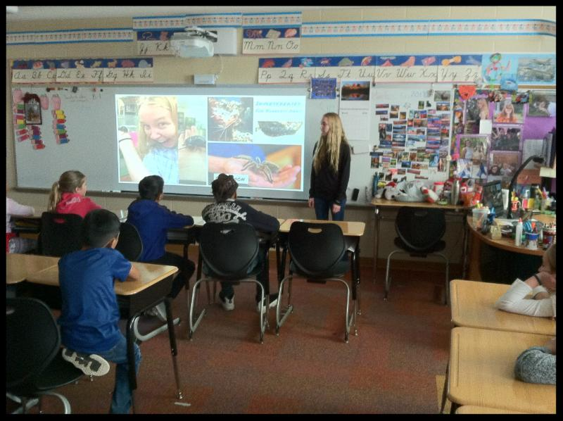 A young woman stands in front of  a room of students. On the Smart board behind her are images of a spider in someone_s hand and what might be beetles.