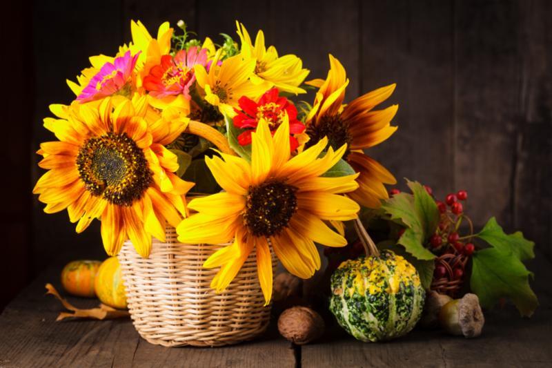 flowers_still_life.jpg