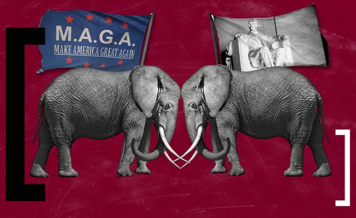 Elephants with MAGA flag