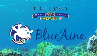 Blue Aina Logo