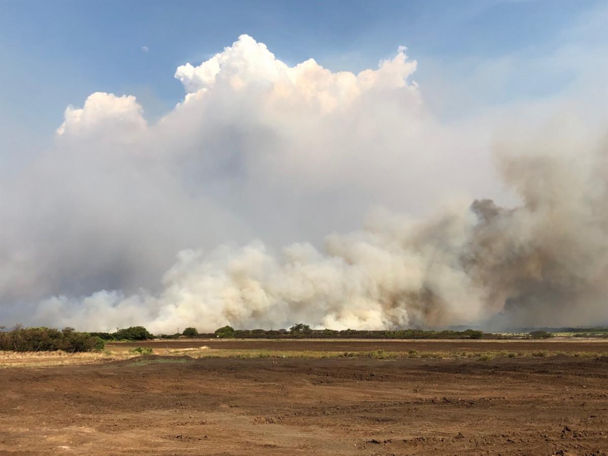Maui Fire 08-2019