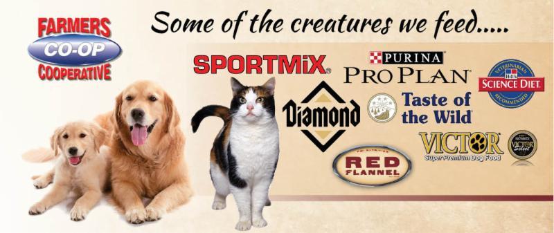 Pet Foods At Farmers Coop