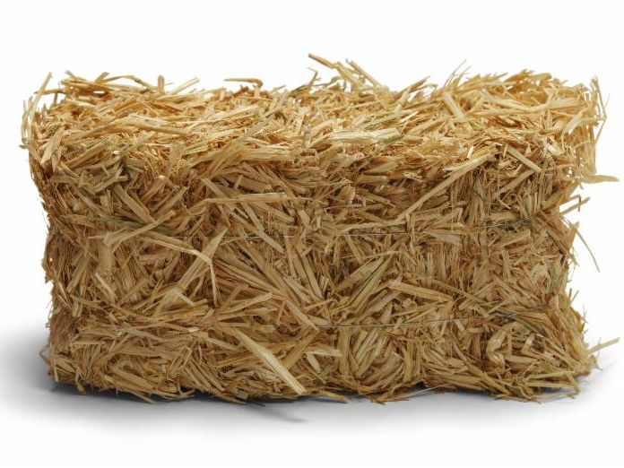 Pick up straw bales at Farmers Coop.