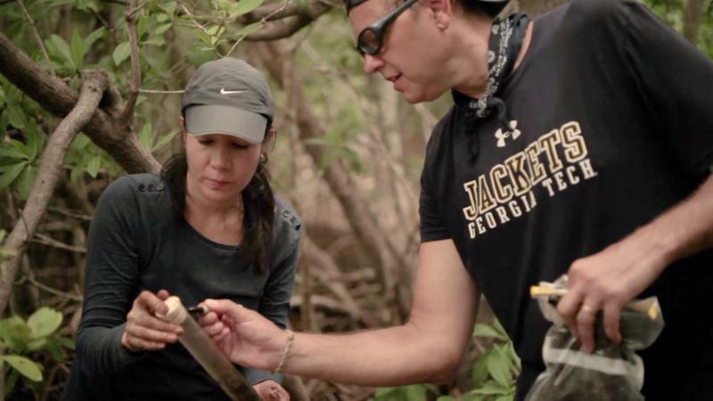 Joel Kostka labels a mangrove sediment core in Mexico.