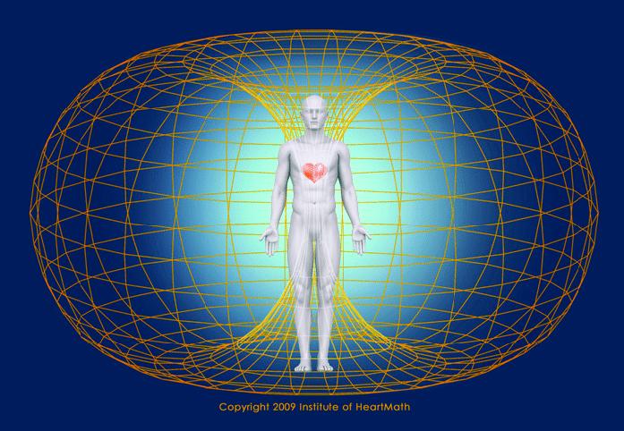 heart magnetic field