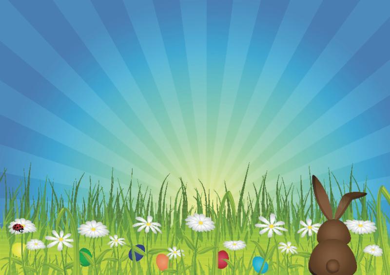 bunny_green_meadow.jpg