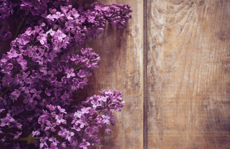 lilacs_on_wood.jpg