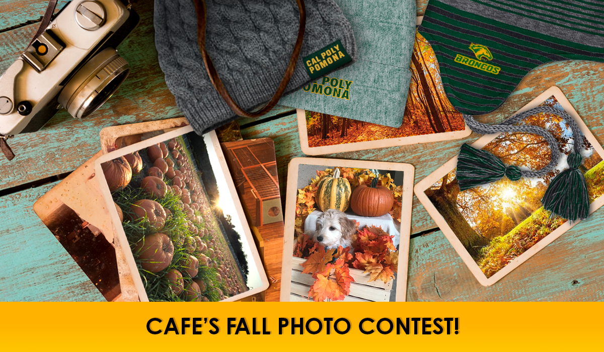CAFEs Fall Photo Contest