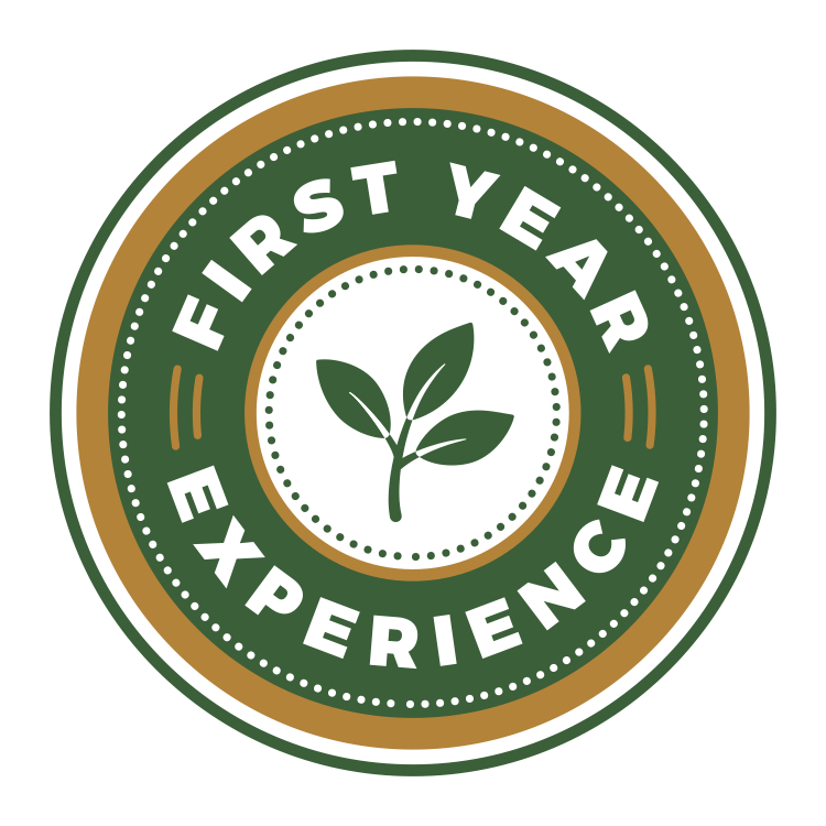 first year experience icon