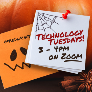 Technology Tuesdays from 3 - 4pm on Zoom