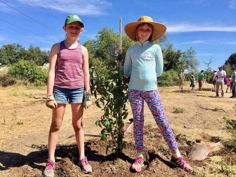 Tree planting duo