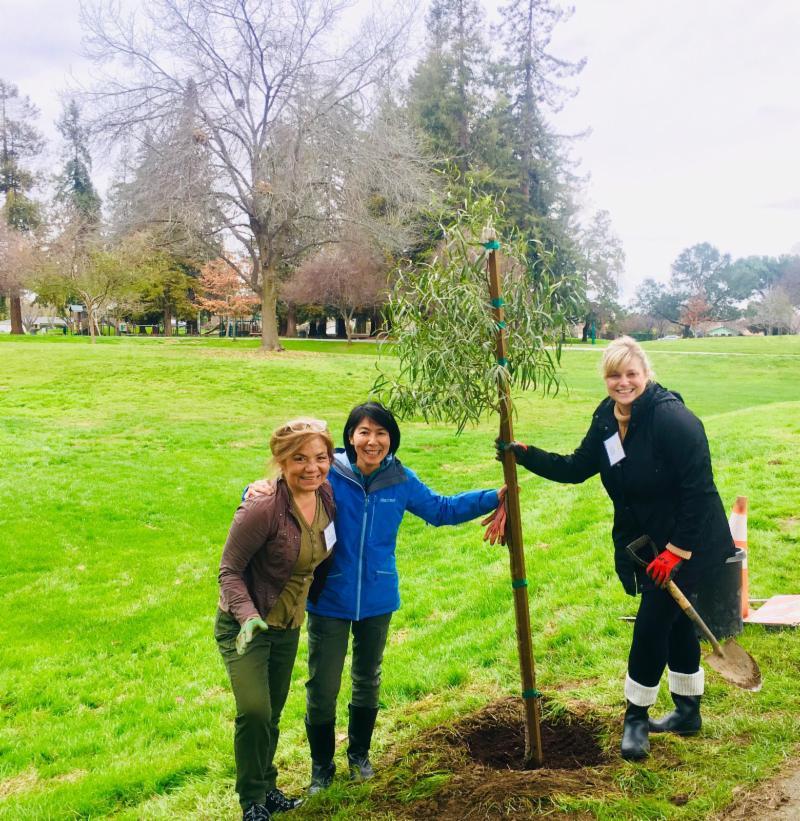 Mountain View Leadership tree planting