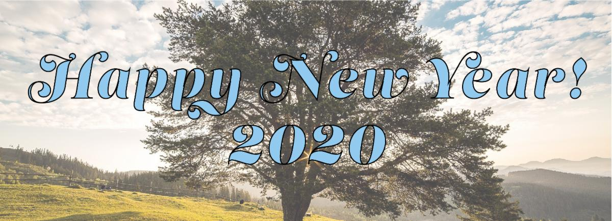 Happy New Year from Canopy 2020