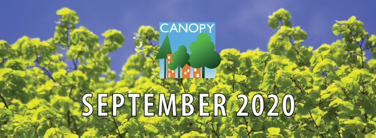 Canopy's September 2020 E-news