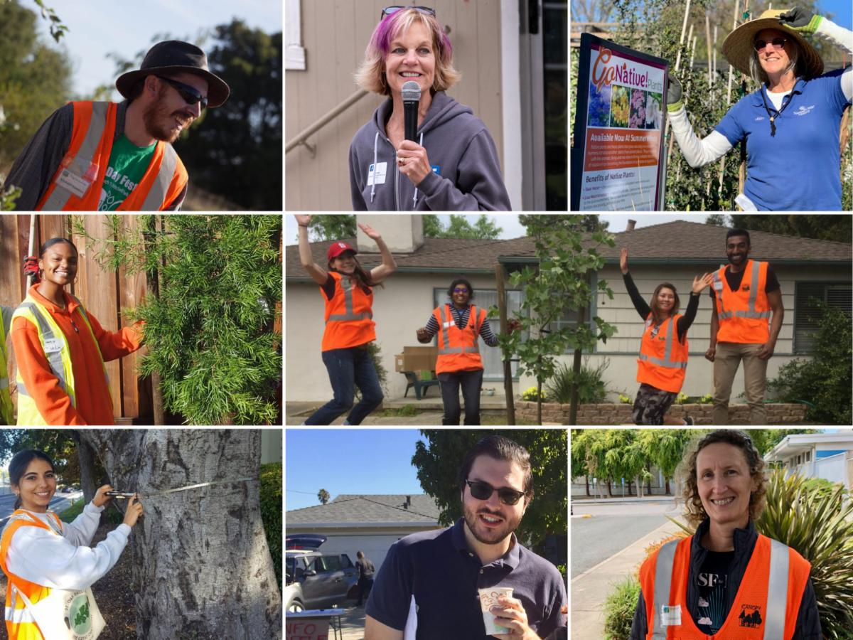 Canopy Tree Awardees 2020
