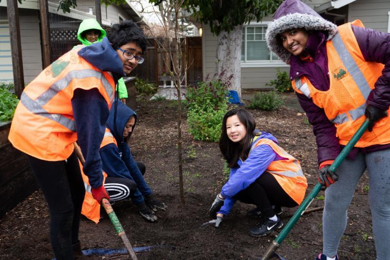 Midtown tree planting