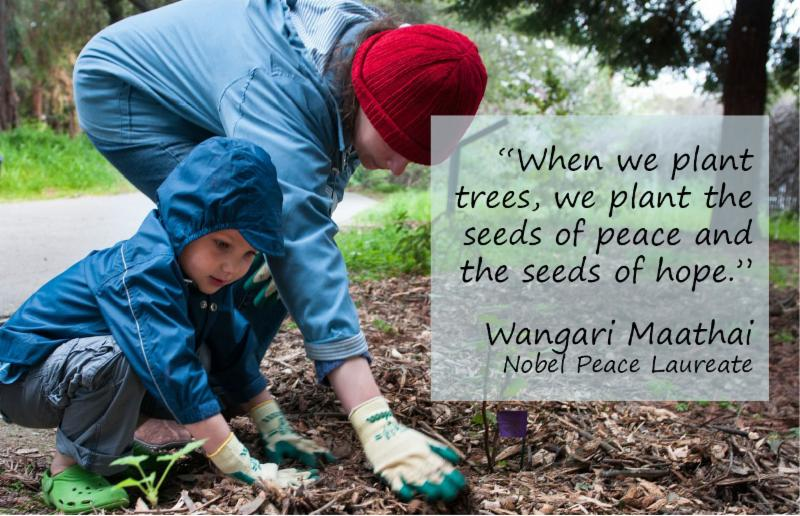 """""""When we plant trees, we plant the seeds of peace and the seeds of hope."""" Wangari Maathai"""