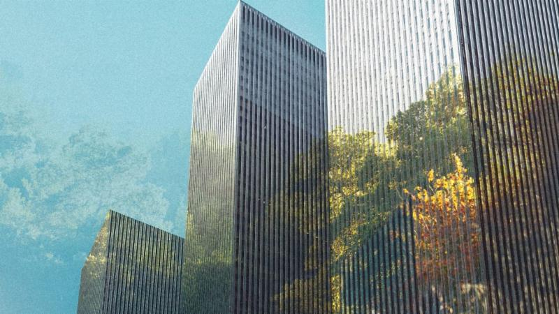City skyscraper with motif of urban forest overlaid.
