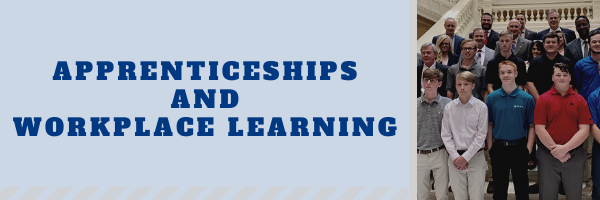 Apprenticeships and Workplace Learning