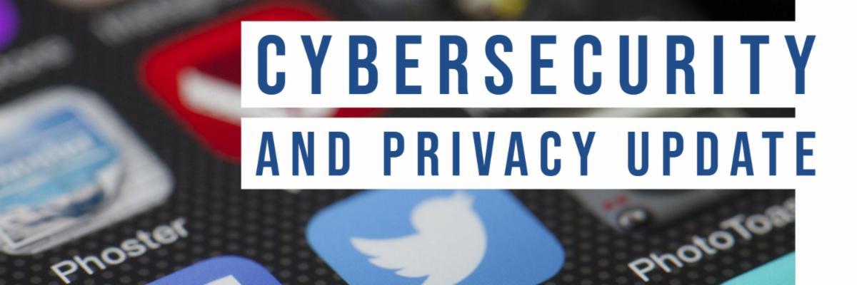 Cybersecurity and Privacy Update