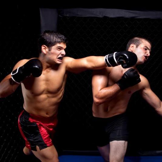 martial_arts_fighting.jpg