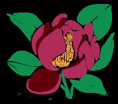 Garland-Magnolia-logo-icon.png