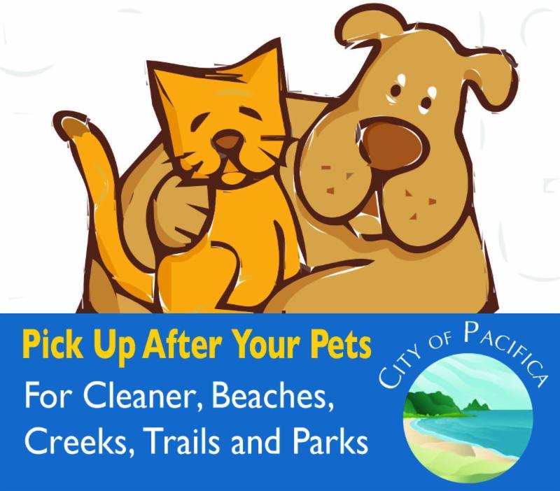 Pick Up After Pet