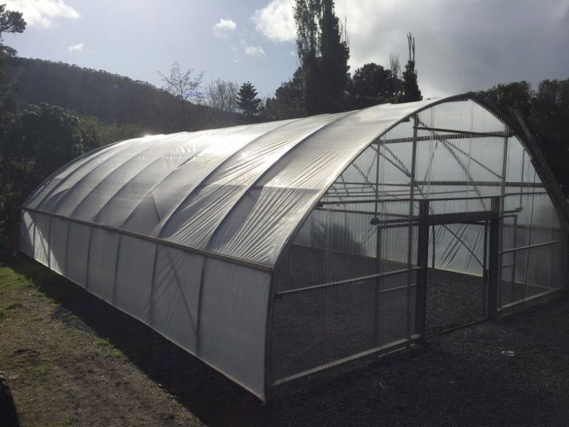 Greenhouse behind LM Fire Station