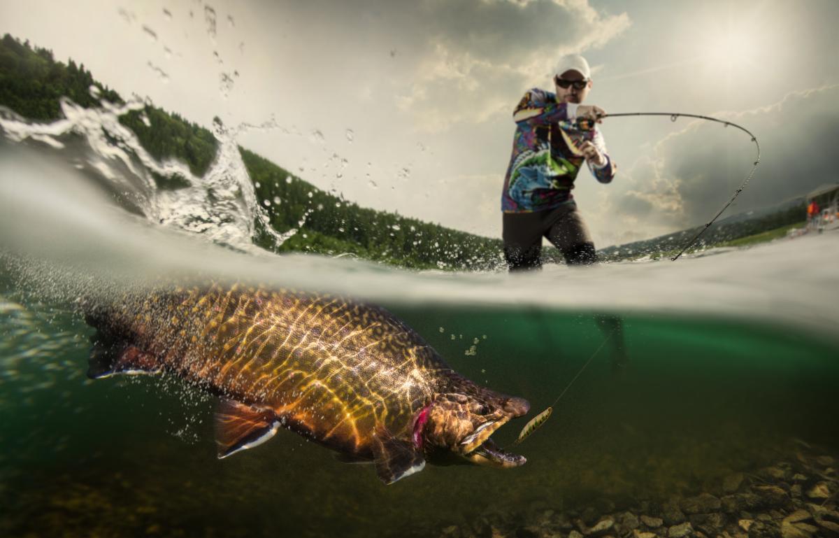 Trout Fishing.jpeg