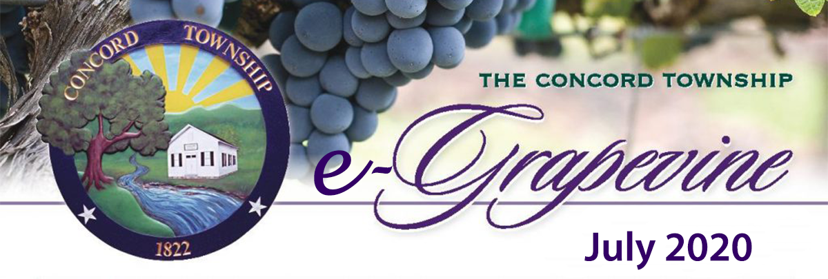 e-Grapevine July 2020