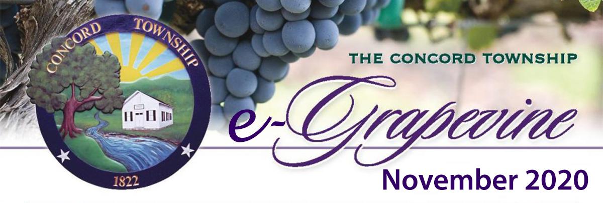 November 2020 e-Grapevine