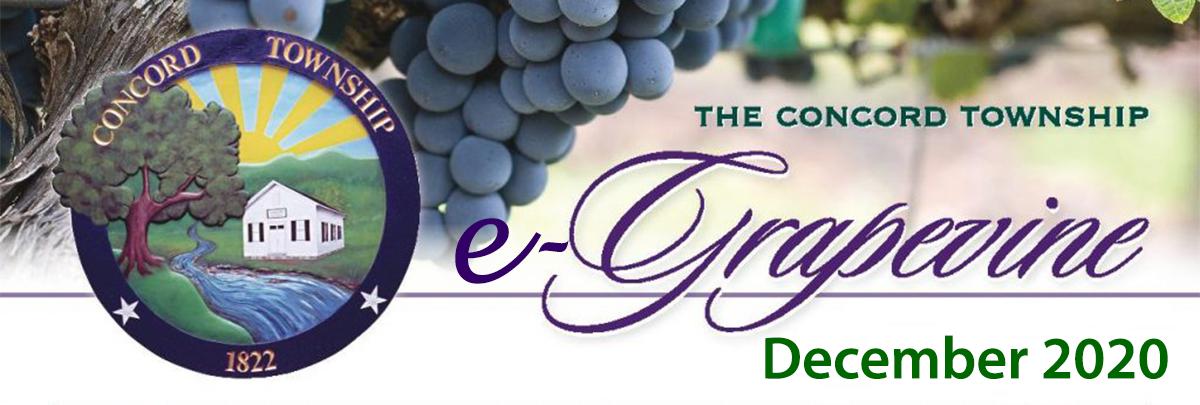 December 2020 e-Grapevine