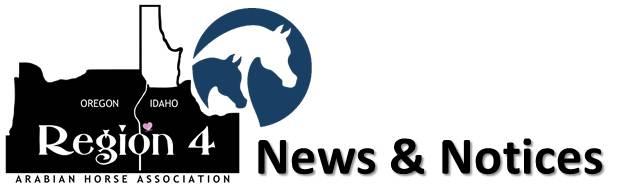 News & Notices logo