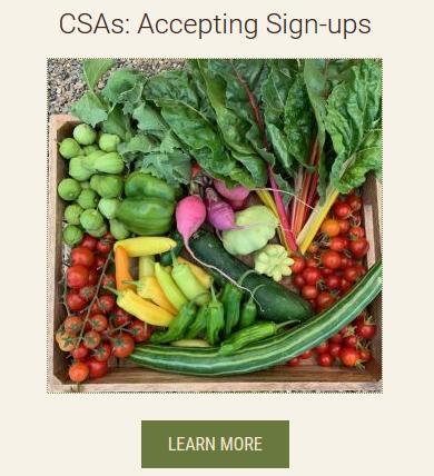 screen shot of CSA list link