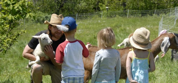 Toddypond Farm - A Farm Stay U.S. member