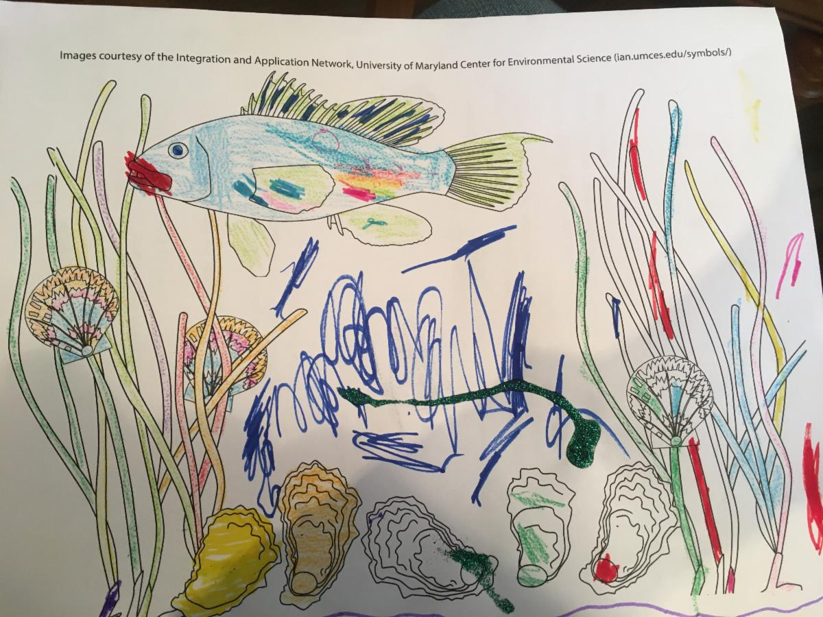 child's drawing of oysters, fish, and seagrass