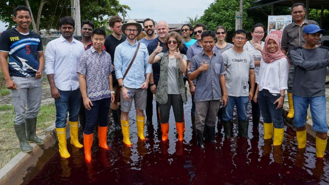 Suzan Shahrestani stands with others in a pond at a shrimp farm