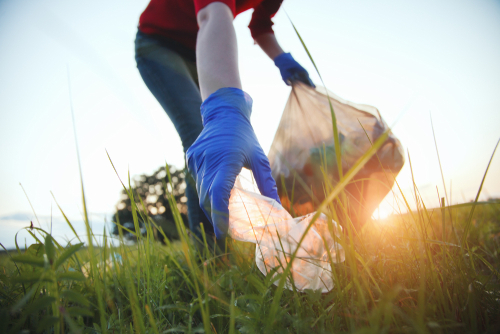 volunteer young woman collecting garbage_ picking up waste at sunset light_ land pollution_ environmental problem