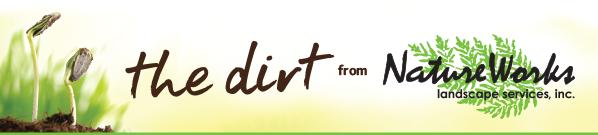The Dirt Newsletter