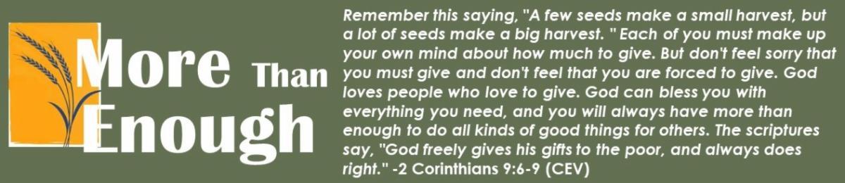 Scripture Stewardship 2019