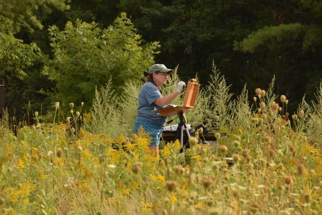 En plein air painter