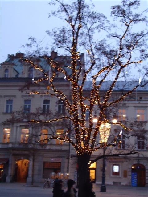 Poland trees