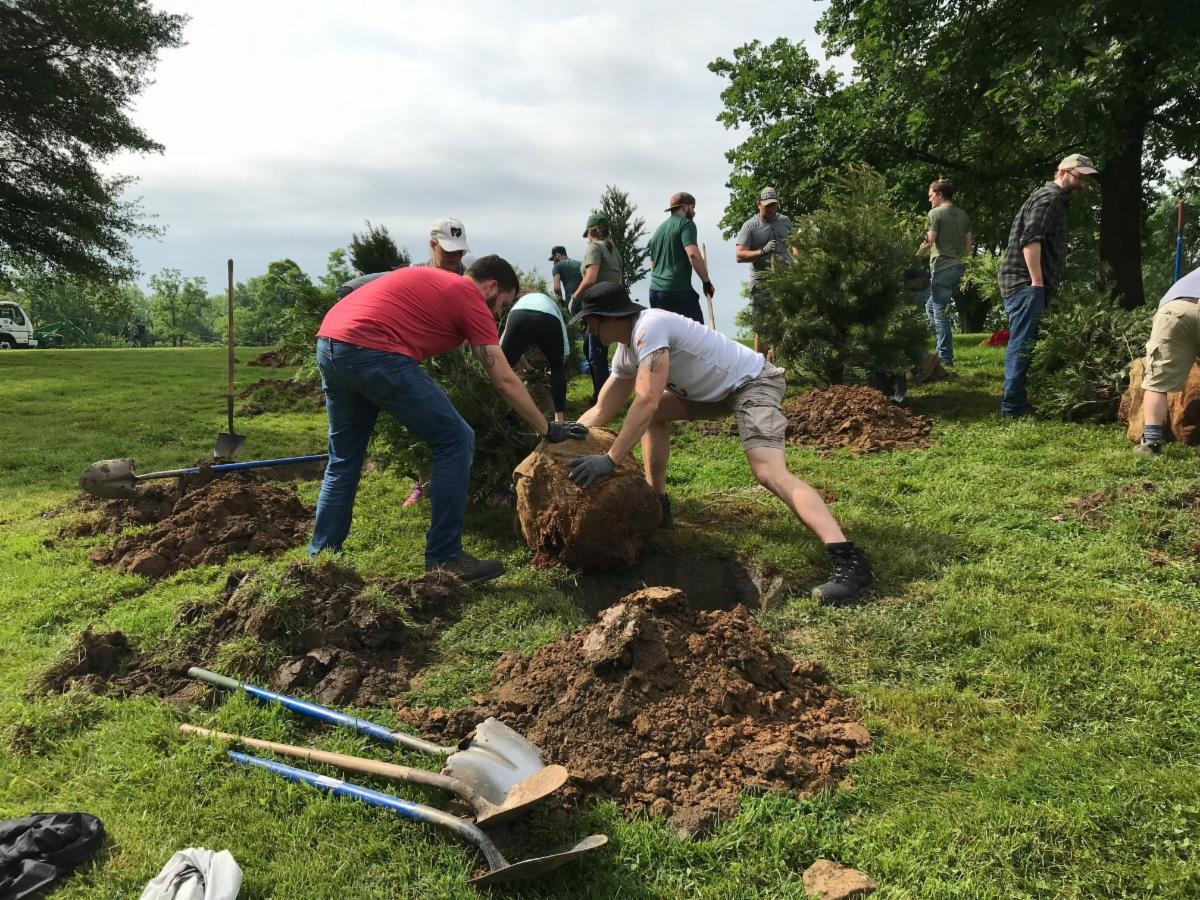 Men planting a tree in the ground.